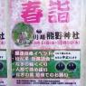 川越熊野神社 春詣を実施中