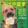 犬猫譲渡会in小江戸蔵里
